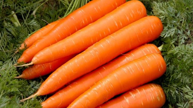 Сколько калорий в моркови?