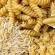 Что полезнее рис или макароны