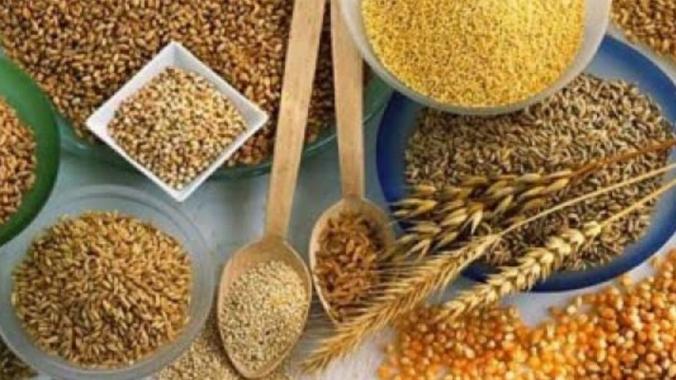 Что полезнее фасоль или чечевица